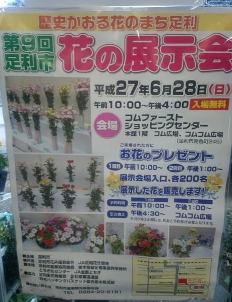 第9回足利産花の展示会〜アピタ〜